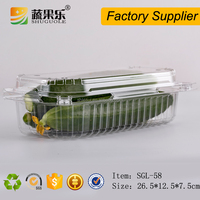 Supermarket Fruit/ Vegetable Packing Clear Plastic Food Disposable Container