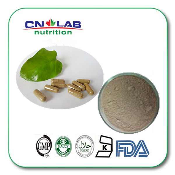 10:1 natural Coastal Glehnia Root Extract Radix Isatidis powder