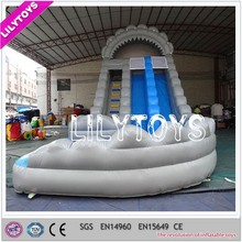 OEM Durable Commercial Used Inflatable Adult Water Slide for Sale