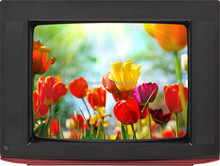 High Brightness AC/DC Input 21inch Flat Screen Crt Monitor TV with Best Price