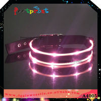 Waterproof led dog collar good for trade show