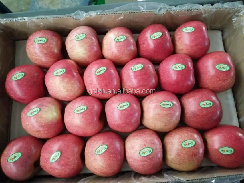 red fresh bagged qinguan apple