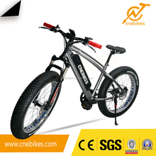 2017 new mid motor/hub motor assisted high speed mountain electric bike for audlt
