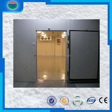 China gold supplier best sell indoor and outdoor walking cold room