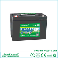 EverExceed VRLA Storage Battery, 6V 135AH Sealed Lead Acid Deep Cyale Series Batteries with AGM separator DP-6135