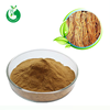 Natural Chinese Angelica Extract