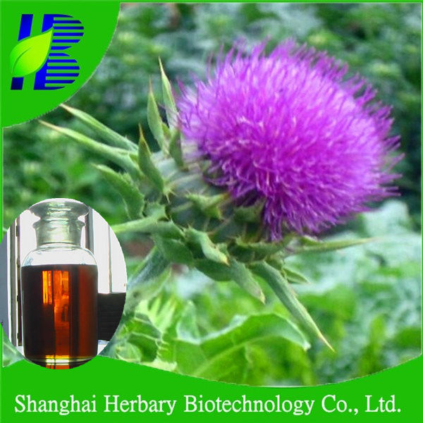 GMP manufacturer supply silybum marianum extract milk thistle extract oil
