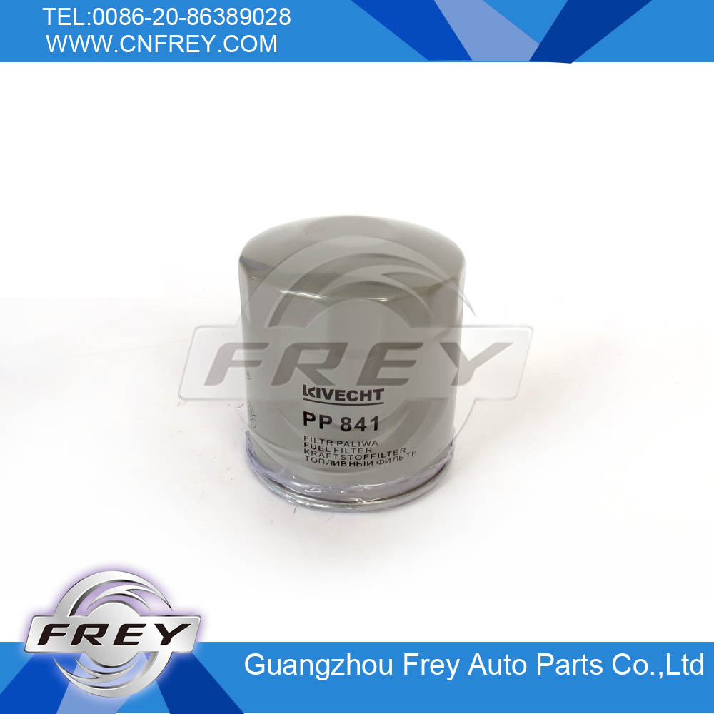 Fuel filter FOR 6010901652 FOR W202 <strong>W124</strong> W463 W638 Auto Parts PP841
