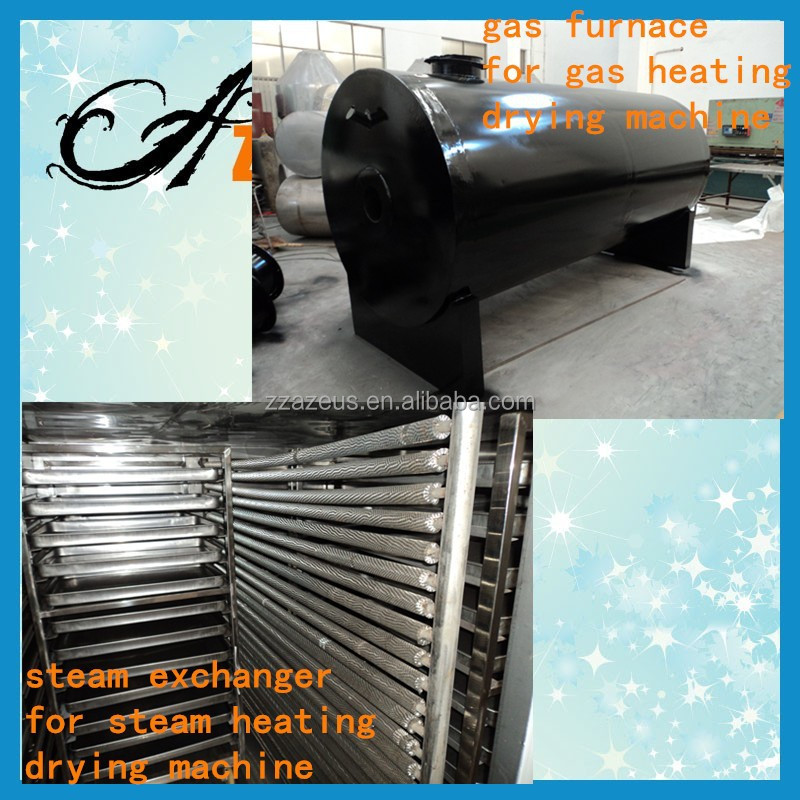 hot air dryer for fruit and vegetable/noodle drying machine/pasta drying oven