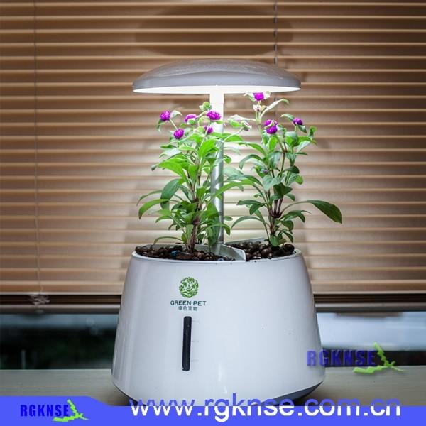 2016 hot round mini Air Plant Pot Gift , Crystal Smart mini flower