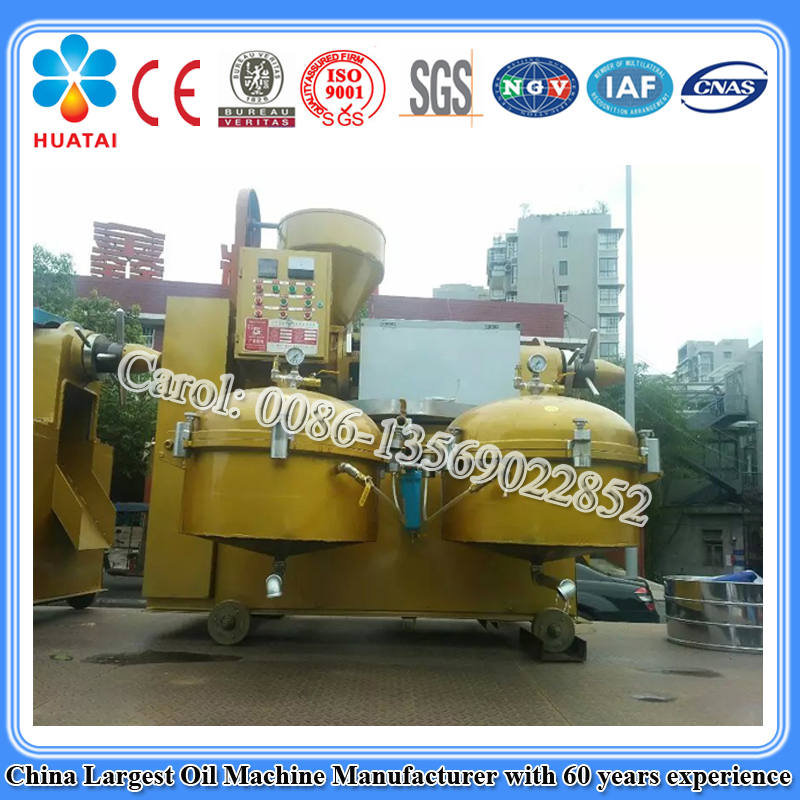 Screw type sunflower oil press machine price