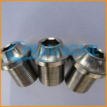 Made in china fastener decorative screw covers