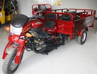 From China best new 200cc cargo tricycle in the coming market