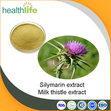 ISO manufacturer supply silymarin powder milk thistle extract