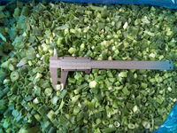 IQF frozen Green onion /vegetables with BRC Kosher certificate