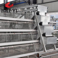 poultry farming equipment for layer chickens