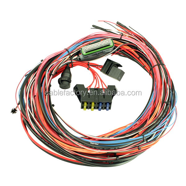 Custom Electronic Auto Wire Harness Connector