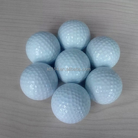 100 pieces professional plain two layer range golf ball