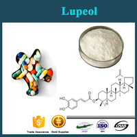 100% Natural Herbal Extract Lupeol 98%/Crataeva Nurvala Extract