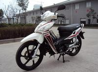 Berma South Ameraca hot sale cub-type motorcycle 110cc 125cc Asia wolf motorcycle