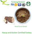 Wholesale Poria Cocos Extract
