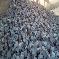 2017 International Coke Price Professional Foundry