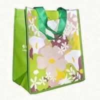 top quality shopping bag.nonwoven bag