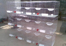 folding small quail cage sale for poultry farm/outdoor use quail cage