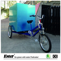 Electric Cargo Delivery Trike