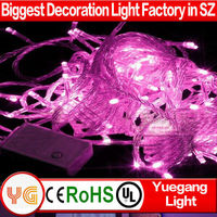 Professional factory supply top quality led christmas light outdoor christmas led light