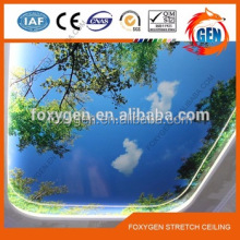 china low price LED blue sky pvc ceiling panel designs