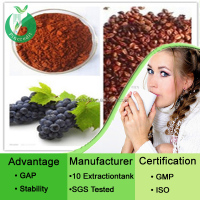 Grape Seed Extract /Grape Seed Oil/Organic Grape Seed Extract