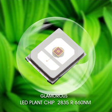 Factory price SMD LED chips 2835 0.2W 0.5W 660-665nm led diode lanterns for Room Decoration and Plant grow