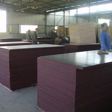 cheap price Carbonized vertical bamboo 100% keruing plywood