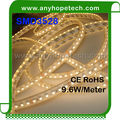 Double PCB highest selected SMD IP68 12V 3528 weatherproof led strips
