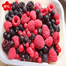 High Quality Frozen IQF Mixed Berries Mixed Fruit in bulk