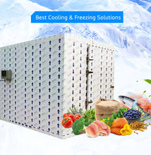 Mini Cold Storage Cooling System Frozen Cold Room For Fish