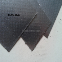 perforate metal with two faces flexible graphite seal gasket sheet