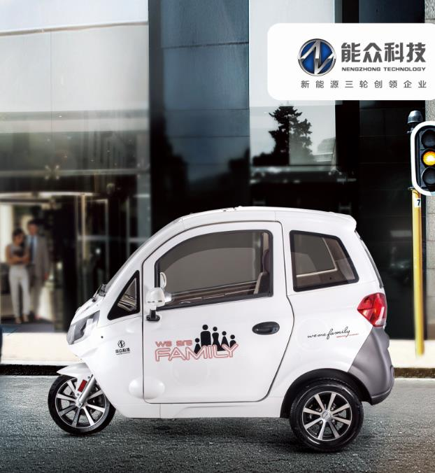 China large space enclosed electric trike with EEC