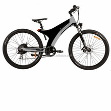 250W /500W/750W/1000W big power Fat tire electric Mountain bike/Snow bike/electric bicycle