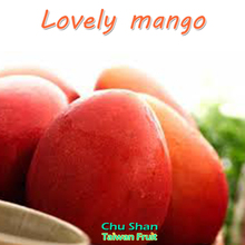 Fruits and vegetables-fresh mango from Taiwan