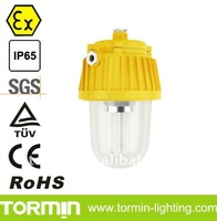 Explosion Proof Fluorescent Lamp