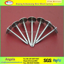 high quality 9g galvanized umbrella roofing nails with low prices(china factory)