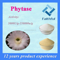 Wholesale Phytase/Thermostable phytase supplement