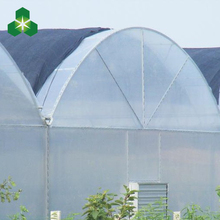 large heated cold farm plastic film greenhouse for bell pepper