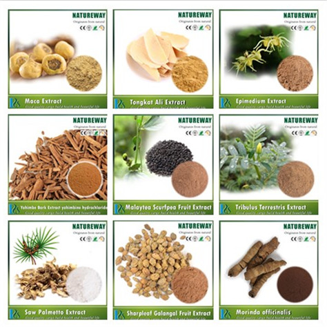 Sex product Sharple Morinda psoralen saw palmetto Yohimbine Tribulus Terrestris Epimedium Tongkat Ali Maca Extract Powder
