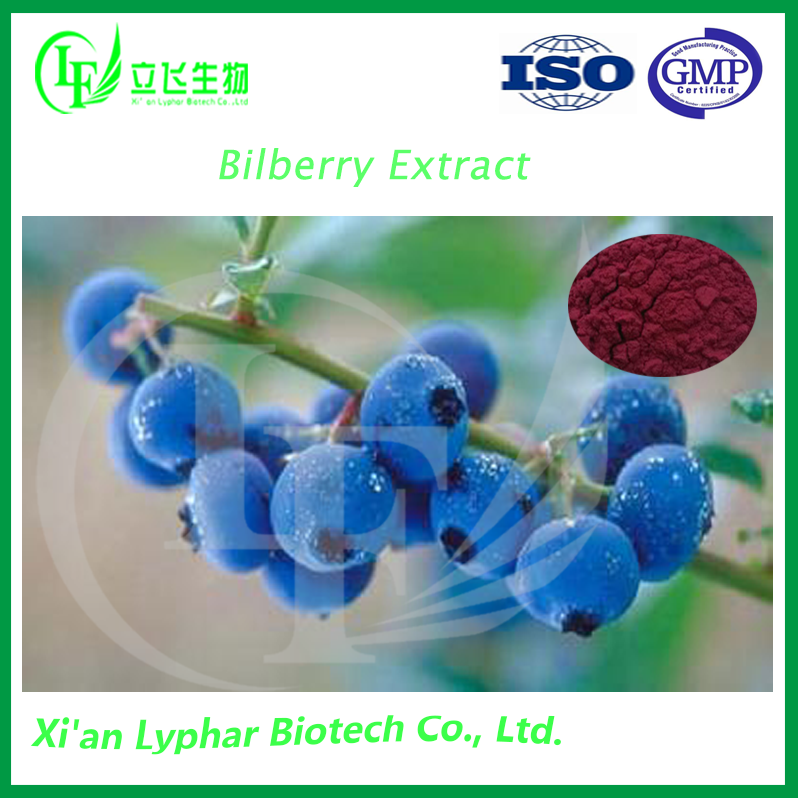 High Quality Bilberry Extract From Fresh Bilberry