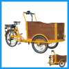 Alloy Frame 3 Wheel Electric Cargo Bike for Leisure