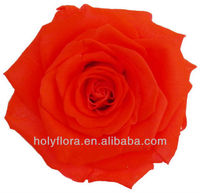 rose flower for Christmas gifts/handmade crafts for decoration