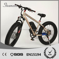 light weight high speed brushless geared hub motor, electric mountain bike